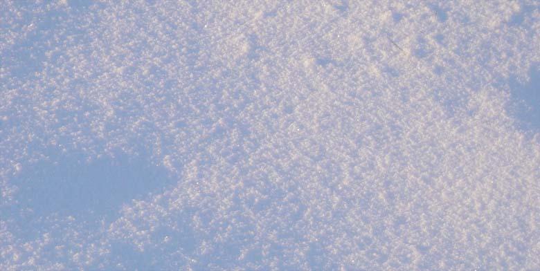 snowone