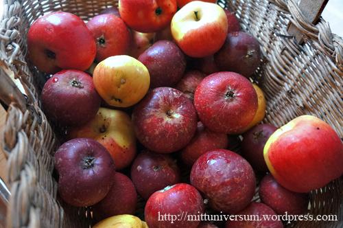 äpplen i februari