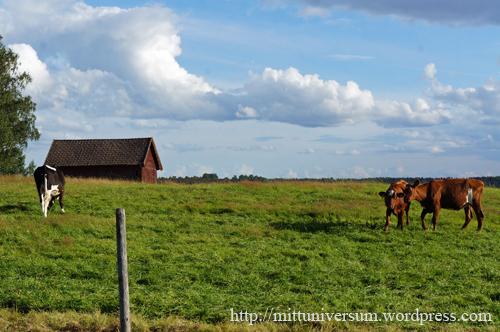 levande landsbygdVästmanland